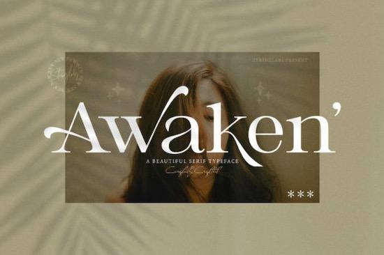 Awaken font free download