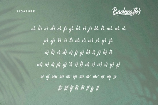 Backscatter font free