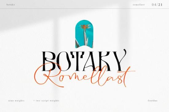 Botaky Romellast font free download