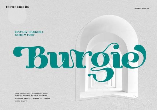 Burgie font free download