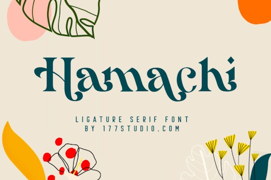Hamachi font free download