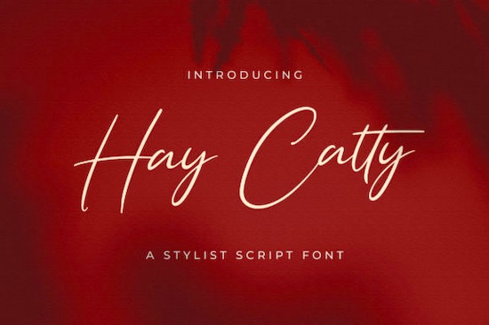 Hay Catty font free download