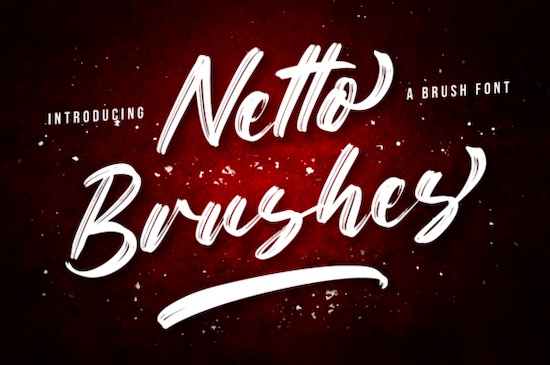 Netto Brushes Font free download