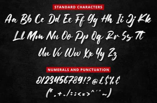 Netto Brushes Font free