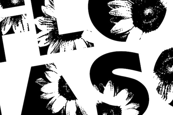 SUNFLOWER SEASON font free