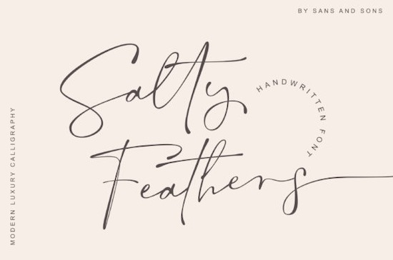 Salty Feathers font free download