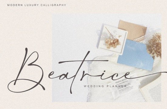 Salty Feathers font free