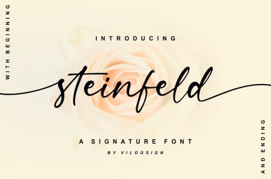 Steinfeld font free download
