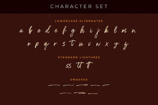 The Rolleta font