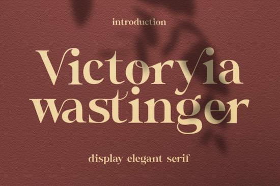 Wastinger font free download