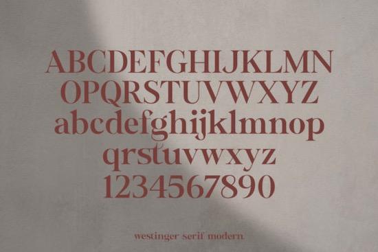 Wastinger font free