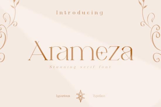 Arameza font free download
