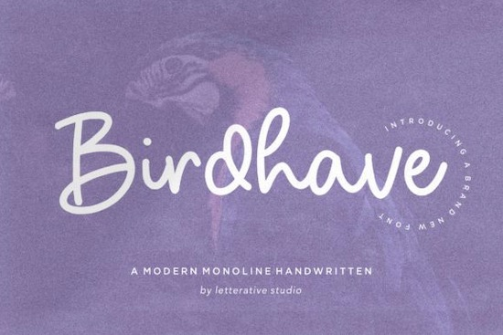 Birdhave font free download
