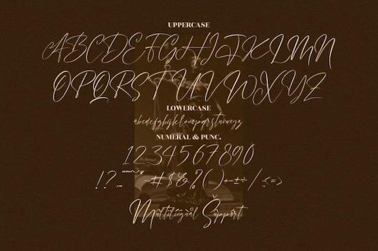 Handover Signature font download