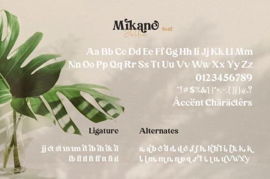 Mikane Jellie font free