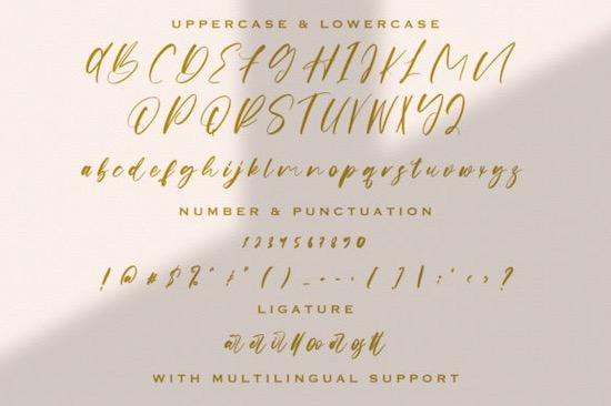 Origa Script font free