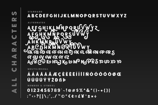 Point Panther font free