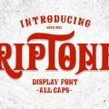 Riptone font free download