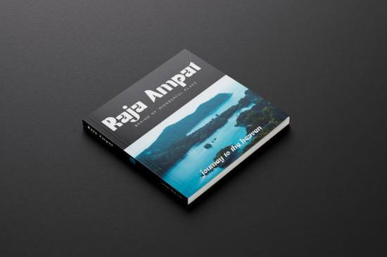 Ruttels Display font download