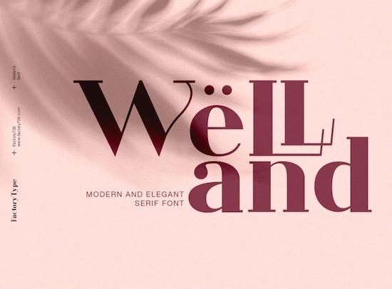 Welland font free download