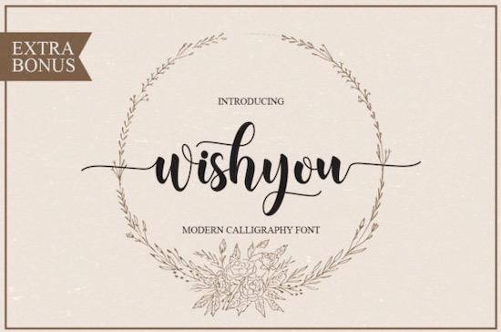 Wishyou font free download