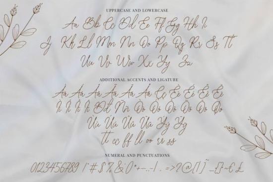 Bearetta font download