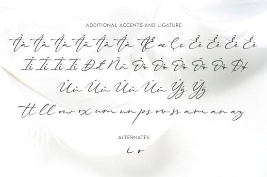 Beautiella font free