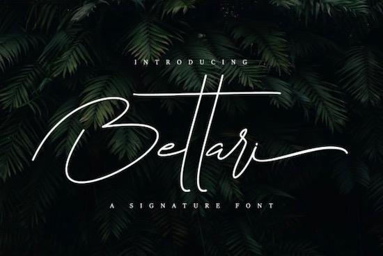 Bettari font free download