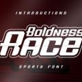 Boldness Race font free download