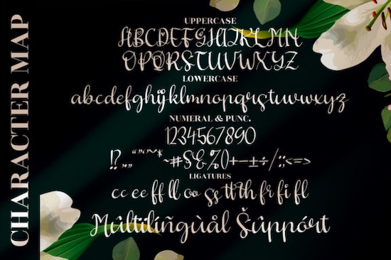 Butterfly Hellyna font download