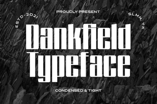 Dankfield font free download