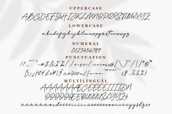 Dellynda font download