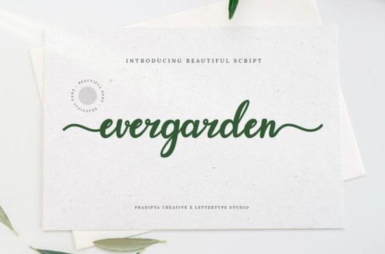 Evergarden font free download