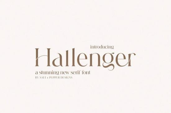 Hallenger font free download