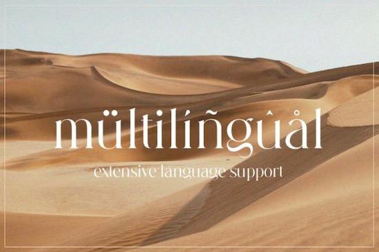 Hallenger font free