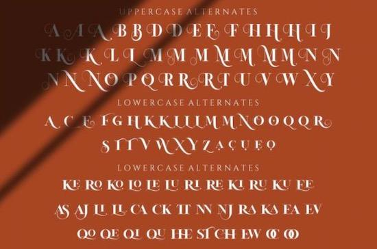 La Vieste font free