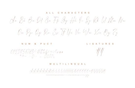 Photograph font download