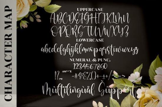 Raflestta Elisha font download