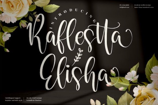 Raflestta Elisha font free download