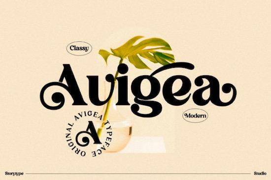 Avigea font free download