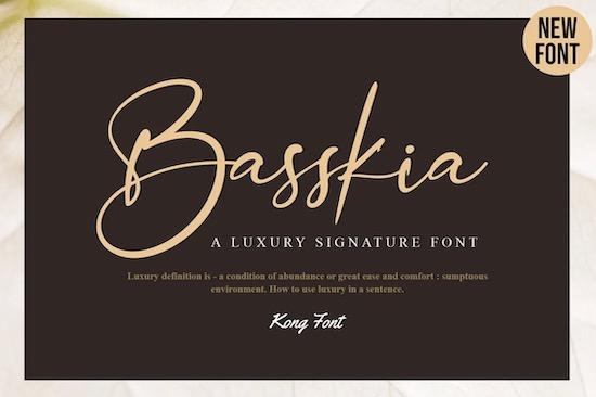 Basskia font free download