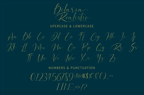 Bilaria Realistic font download