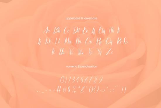 Brigitta Austin font free