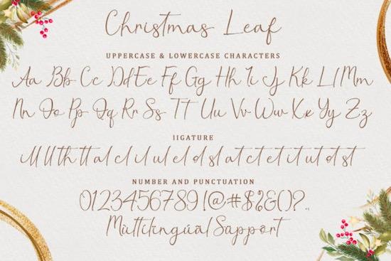 Christmas Leaf font download