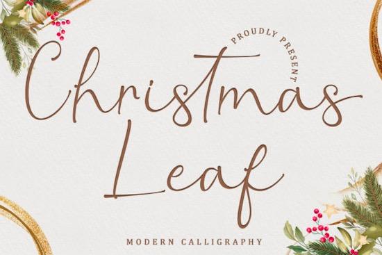 Christmas Leaf font free download