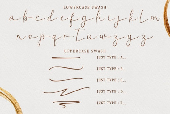 Christmas Leaf font free