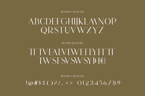 DSETRO font download