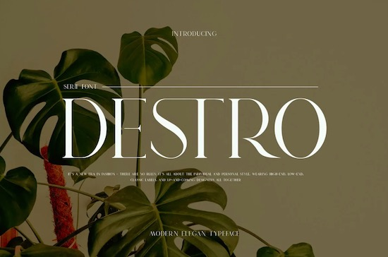 DSETRO font free download