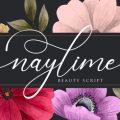 Naylime font free