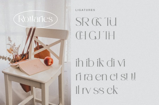 Rottaries font download